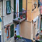 Cinque Terre Balcony by Robert Case