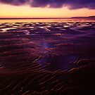 Westward Ho! Beach at Dusk by Craig Joiner
