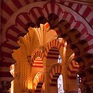 Cordoba's Lasting Beauty: the Mesquita (Prt. 1) by ferryvn