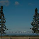 Mount Susitna (Sleeping Lady) by Sally Winter