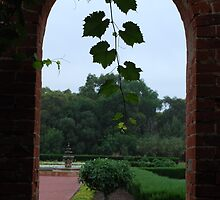 Grant Burge Winery by KaPaphotography