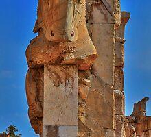 Old Cow - Persepolis - Iran by Bryan Freeman