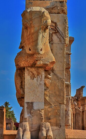 Old Cow - Persepolis - Iran by Bryan Freeman