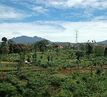 mountain hill by bayu harsa