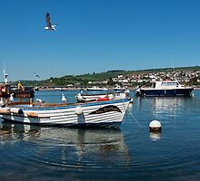 Teignmouth Harbour ~ Devon by Susie Peek