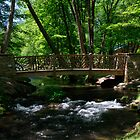 Cobblestone Bridge by Debbie Moore