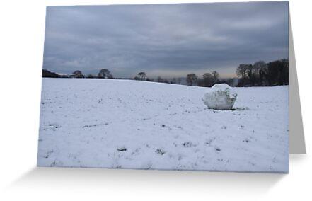 Christmas in Aberdour by Steve Hammond