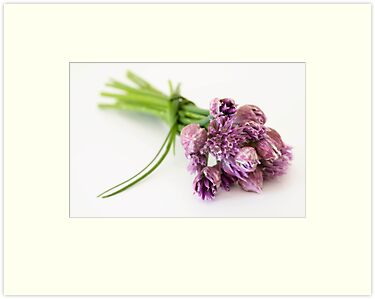 Chives Beauties by Priska Wettstein