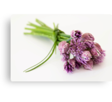 Chives Beauties Canvas Print