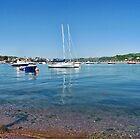 Coastal Colours At Teignmouth by lynn carter