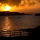 Golden rays over loch Dunvegan by Shaun Whiteman