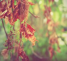 Fall To Pieces by Ashley Christine Valentin