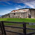 15876  Swansea TASMANIA by thorpey