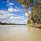 Rope Swing - Morgan, SA by AllshotsImaging