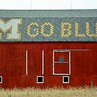 Go Blue Michigan Barn by Robert Kelch, M.D.