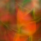 Heliconia abstraction by LouD