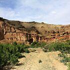 Nine Mile- Canyon,Utah,USA, by Bellavista2