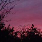 Red Sky In Morning by Kelly Elliott