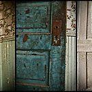 Painted Doors by Appel