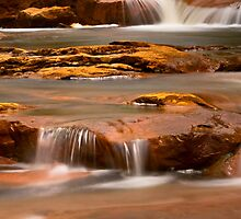 North Fork Blackwater River by LeeAnne Emrick