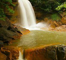Douglas Falls by LeeAnne Emrick