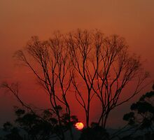 Bushfire Sunset by Kim Roper