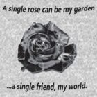 A Single Rose... by Gail Bridger