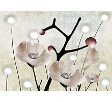Poema Nieve de Mayo  Photographic Print