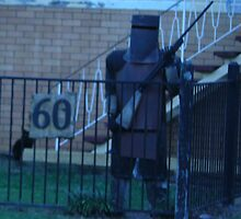 Ned Kelly Standing Guard at Number 60 with a black cat by Portia Greenwood