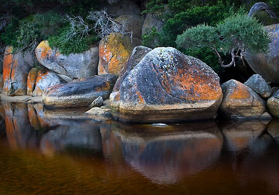 Painted Boulders by Mieke Boynton