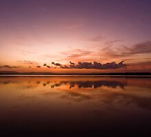 forster sun down by kevin chippindall