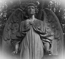 Angel of Highgate by liverecs