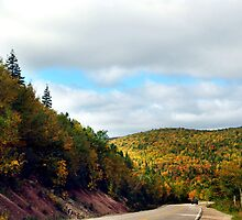 Autumn Drive on the Cabot Trail by Jann Ashworth