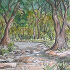 Dry Creek in Spring by Betty Burnitt