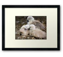 Would you tell me something? Framed Print