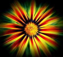A Flower's Heartbeat! by Kalyan29883