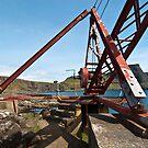 Crane at Neist Point by Stuart1882