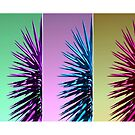 Palm Trio by Kristine Kowitz