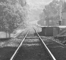 Railway Station Tyabb. by Lanii  Douglas