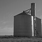 Silo - outside Horsham, Victoria by Joshua Westendorf