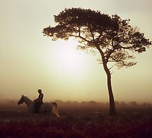 Horse Riding at Sunrise by Kasia Nowak