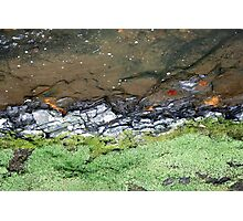 roundhay fall Photographic Print