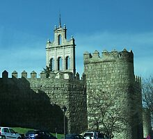 Walls of Avila by Alison Howson