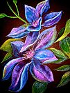 Flowers...Clematis by © Janis Zroback