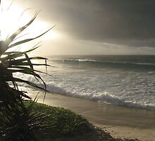 Wategoes Beach - New South Wales by Louise Linossi Telfer