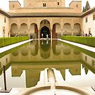 Alhambra, Granada, Spain by Alison Howson