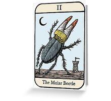 The Molar Beetle Greeting Card