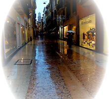Wet Marble Streets of Verona II by Al Bourassa