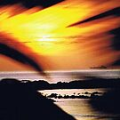 Panama Sunrise by SherryLynn58