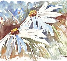 Daisy love in Spring by Maree  Clarkson